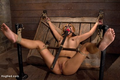 Photo number 1 from Hot little Japanese girl is made to cum over and over   so much she forgets how to speak English. shot for Hogtied on Kink.com. Featuring Yuki Mori in hardcore BDSM & Fetish porn.