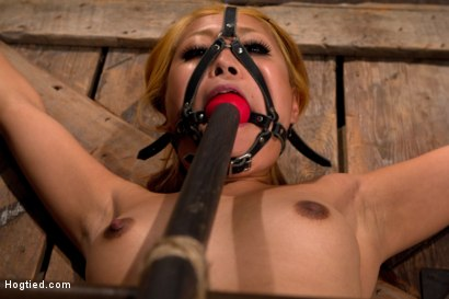 Photo number 5 from Hot little Japanese girl is made to cum over and over   so much she forgets how to speak English. shot for Hogtied on Kink.com. Featuring Yuki Mori in hardcore BDSM & Fetish porn.