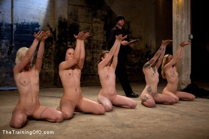 Photo number 14 from Day 2 February's Final 2 Slaves shot for The Training Of O on Kink.com. Featuring Emma Haize, Cheyenne Jewel, Michelle, Sparky Sin Claire and Shae Simone in hardcore BDSM & Fetish porn.