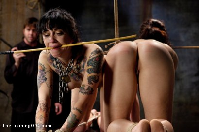 Photo number 7 from Day 3 - sparky and muscles  shot for The Training Of O on Kink.com. Featuring Cheyenne Jewel and Sparky Sin Claire in hardcore BDSM & Fetish porn.
