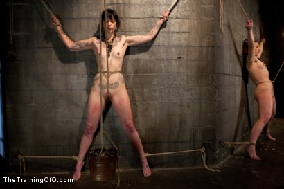 Photo number 5 from Day 3 - sparky and muscles  shot for The Training Of O on Kink.com. Featuring Cheyenne Jewel and Sparky Sin Claire in hardcore BDSM & Fetish porn.