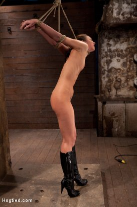 Photo number 3 from Sexy, tall, long legged, tan girl next door<br>Brutal bondage, neck rope, breath play, made to come! shot for Hogtied on Kink.com. Featuring Tiffany Tyler in hardcore BDSM & Fetish porn.