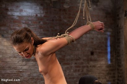 Photo number 9 from Sexy, tall, long legged, tan girl next door<br>Brutal bondage, neck rope, breath play, made to come! shot for Hogtied on Kink.com. Featuring Tiffany Tyler in hardcore BDSM & Fetish porn.