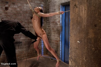 Photo number 12 from It's her first hardcore Bondage shoot.<br>She cums like a whore while gagged & suspended! Category 5 shot for Hogtied on Kink.com. Featuring Tiffany Tyler in hardcore BDSM & Fetish porn.