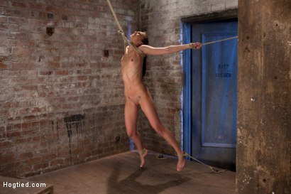 Photo number 13 from It's her first hardcore Bondage shoot.<br>She cums like a whore while gagged & suspended! Category 5 shot for Hogtied on Kink.com. Featuring Tiffany Tyler in hardcore BDSM & Fetish porn.