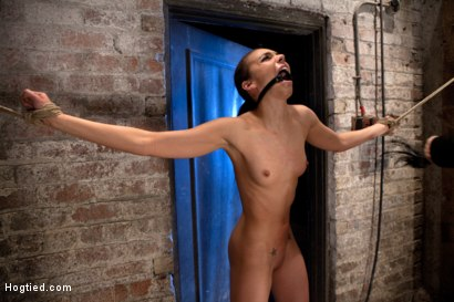 Photo number 3 from It's her first hardcore Bondage shoot.<br>She cums like a whore while gagged & suspended! Category 5 shot for Hogtied on Kink.com. Featuring Tiffany Tyler in hardcore BDSM & Fetish porn.