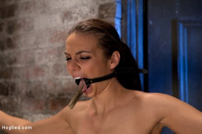 Photo number 4 from It's her first hardcore Bondage shoot.<br>She cums like a whore while gagged & suspended! Category 5 shot for Hogtied on Kink.com. Featuring Tiffany Tyler in hardcore BDSM & Fetish porn.