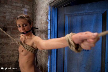 Photo number 8 from It's her first hardcore Bondage shoot.<br>She cums like a whore while gagged & suspended! Category 5 shot for Hogtied on Kink.com. Featuring Tiffany Tyler in hardcore BDSM & Fetish porn.