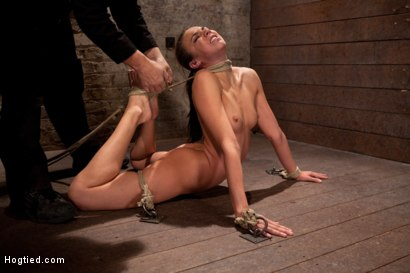 Photo number 11 from Girl next door is bound in basement, her back pulled to the breaking point, can she keep conscious? shot for Hogtied on Kink.com. Featuring Tiffany Tyler in hardcore BDSM & Fetish porn.