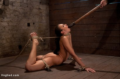 Photo number 5 from Girl next door is bound in basement, her back pulled to the breaking point, can she keep conscious? shot for Hogtied on Kink.com. Featuring Tiffany Tyler in hardcore BDSM & Fetish porn.