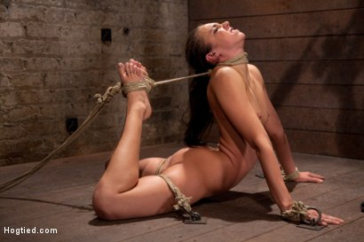 Photo number 12 from Girl next door is bound in basement, her back pulled to the breaking point, can she keep conscious? shot for Hogtied on Kink.com. Featuring Tiffany Tyler in hardcore BDSM & Fetish porn.