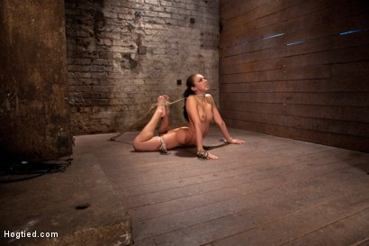 Photo number 14 from Girl next door is bound in basement, her back pulled to the breaking point, can she keep conscious? shot for Hogtied on Kink.com. Featuring Tiffany Tyler in hardcore BDSM & Fetish porn.
