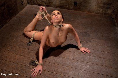 Photo number 3 from Girl next door is bound in basement, her back pulled to the breaking point, can she keep conscious? shot for Hogtied on Kink.com. Featuring Tiffany Tyler in hardcore BDSM & Fetish porn.