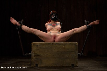 Photo number 10 from Misti Dawn shot for Device Bondage on Kink.com. Featuring Misti Dawn in hardcore BDSM & Fetish porn.