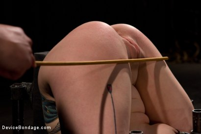 Photo number 2 from Misti Dawn shot for Device Bondage on Kink.com. Featuring Misti Dawn in hardcore BDSM & Fetish porn.
