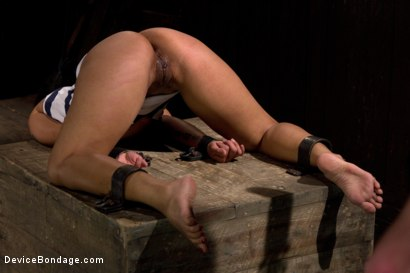 Photo number 9 from The Cumming of the Dragon shot for Device Bondage on Kink.com. Featuring DragonLily in hardcore BDSM & Fetish porn.