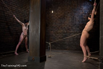 Photo number 6 from Final Exam-muscles and sparky shot for The Training Of O on Kink.com. Featuring Cheyenne Jewel and Sparky Sin Claire in hardcore BDSM & Fetish porn.