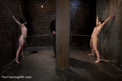 Photo number 5 from Final Exam-muscles and sparky shot for The Training Of O on Kink.com. Featuring Cheyenne Jewel and Sparky Sin Claire in hardcore BDSM & Fetish porn.