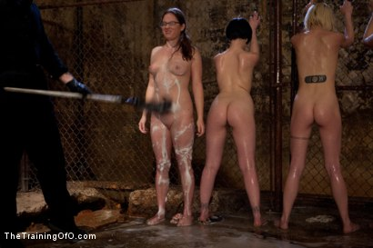 Photo number 10 from Day 1 March   Dirty Trainess Make Dirty Slaves shot for The Training Of O on Kink.com. Featuring Lilla Katt, Shae Simone, Juliette March, Alexxa Bound, Kiki Koi and Jade Taylor in hardcore BDSM & Fetish porn.