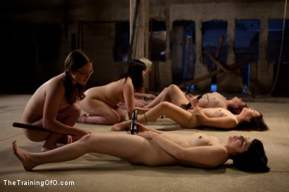 Photo number 2 from Day 1 March   Dirty Trainess Make Dirty Slaves shot for The Training Of O on Kink.com. Featuring Lilla Katt, Shae Simone, Juliette March, Alexxa Bound, Kiki Koi and Jade Taylor in hardcore BDSM & Fetish porn.
