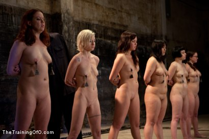 Photo number 5 from Day 1 March<br>Dirty Trainess Make Dirty Slaves shot for The Training Of O on Kink.com. Featuring Lilla Katt, Shae Simone, Juliette March, Alexxa Bound, Kiki Koi and Jade Taylor in hardcore BDSM & Fetish porn.