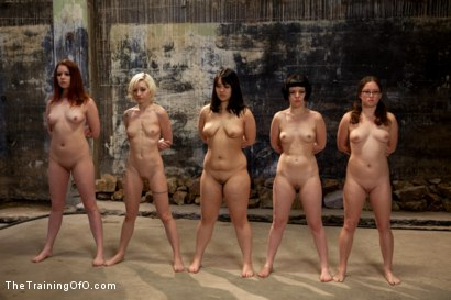 Photo number 2 from Day 2 March Intake<br>The Final Two are Selected shot for The Training Of O on Kink.com. Featuring Lilla Katt, Nicki Blue, Shae Simone, Juliette March, Alexxa Bound and Jade Taylor in hardcore BDSM & Fetish porn.