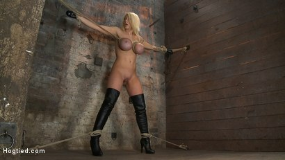 Photo number 1 from California Blond has her massive tits severly bound   We rip Orgasm after Orgasm out of her hot bod shot for Hogtied on Kink.com. Featuring Candy Manson in hardcore BDSM & Fetish porn.