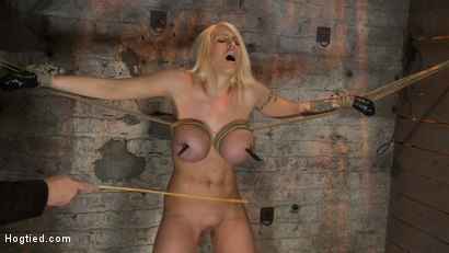 Photo number 6 from California Blond has her massive tits severly bound<br>We rip Orgasm after Orgasm out of her hot bod shot for Hogtied on Kink.com. Featuring Candy Manson in hardcore BDSM & Fetish porn.