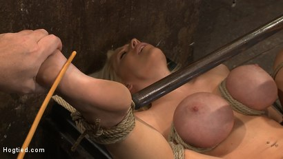 Photo number 5 from California blond with huge tits has them bound to her knees & spread<br>Made to squirt & scream! shot for Hogtied on Kink.com. Featuring Candy Manson in hardcore BDSM & Fetish porn.
