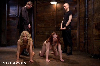 Photo number 1 from Day 4 - kitten and taters<br>Sexual Training for the Trainees shot for The Training Of O on Kink.com. Featuring Lilla Katt, Nicki Blue and Mister Torn in hardcore BDSM & Fetish porn.