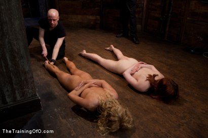 Photo number 12 from Day 4 - kitten and taters<br>Sexual Training for the Trainees shot for The Training Of O on Kink.com. Featuring Lilla Katt, Nicki Blue and Mister Torn in hardcore BDSM & Fetish porn.