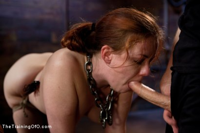 Photo number 6 from Day 4 - kitten and taters<br>Sexual Training for the Trainees shot for The Training Of O on Kink.com. Featuring Lilla Katt, Nicki Blue and Mister Torn in hardcore BDSM & Fetish porn.
