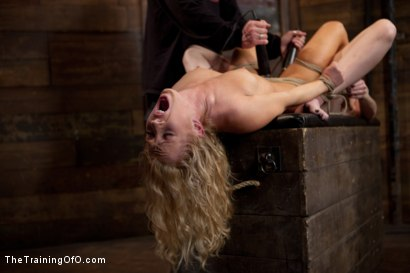 Photo number 9 from Day 4 - kitten and taters<br>Sexual Training for the Trainees shot for The Training Of O on Kink.com. Featuring Lilla Katt, Nicki Blue and Mister Torn in hardcore BDSM & Fetish porn.