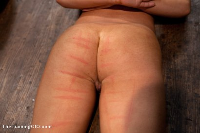 Photo number 3 from Day 4 - kitten and taters<br>Sexual Training for the Trainees shot for The Training Of O on Kink.com. Featuring Lilla Katt, Nicki Blue and Mister Torn in hardcore BDSM & Fetish porn.