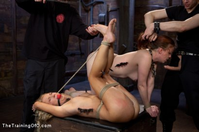 Photo number 4 from Day 4 - kitten and taters<br>Sexual Training for the Trainees shot for The Training Of O on Kink.com. Featuring Lilla Katt, Nicki Blue and Mister Torn in hardcore BDSM & Fetish porn.