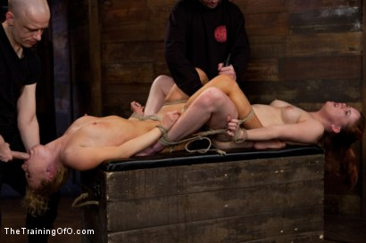 Photo number 8 from Day 4 - kitten and taters<br>Sexual Training for the Trainees shot for The Training Of O on Kink.com. Featuring Lilla Katt, Nicki Blue and Mister Torn in hardcore BDSM & Fetish porn.