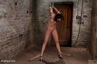 Photo number 13 from Girl next door is overwhelmed from the orgasms we rip from her helpless body<br>Brutal rope Bondage! shot for Hogtied on Kink.com. Featuring Chanel Preston in hardcore BDSM & Fetish porn.