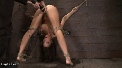 Photo number 7 from Ass hooked, caned & made to cum so much she begs for mercy<br> Humilated and abused, so helpless! shot for Hogtied on Kink.com. Featuring Chanel Preston in hardcore BDSM & Fetish porn.