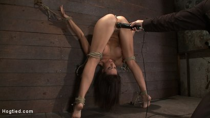 Photo number 10 from Ass hooked, caned & made to cum so much she begs for mercy<br> Humilated and abused, so helpless! shot for Hogtied on Kink.com. Featuring Chanel Preston in hardcore BDSM & Fetish porn.