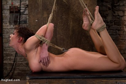 Photo number 13 from Ass hooked, face fck'd, made to cum so hard she begs for mercy We own her body we fck with her soul. shot for Hogtied on Kink.com. Featuring Chanel Preston in hardcore BDSM & Fetish porn.