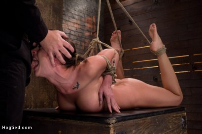 Photo number 14 from Ass hooked, face fck'd, made to cum so hard she begs for mercy We own her body we fck with her soul. shot for Hogtied on Kink.com. Featuring Chanel Preston in hardcore BDSM & Fetish porn.