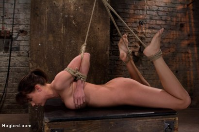 Photo number 1 from Ass hooked, face fck'd, made to cum so hard she begs for mercy We own her body we fck with her soul. shot for Hogtied on Kink.com. Featuring Chanel Preston in hardcore BDSM & Fetish porn.