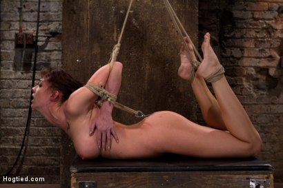 Photo number 12 from Ass hooked, face fck'd, made to cum so hard she begs for mercy We own her body we fck with her soul. shot for Hogtied on Kink.com. Featuring Chanel Preston in hardcore BDSM & Fetish porn.