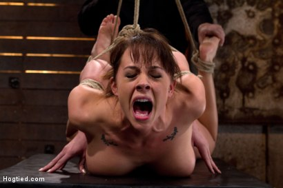 Photo number 6 from Ass hooked, face fck'd, made to cum so hard she begs for mercy We own her body we fck with her soul. shot for Hogtied on Kink.com. Featuring Chanel Preston in hardcore BDSM & Fetish porn.