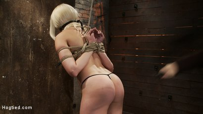 Photo number 6 from Local amateur girl in her first hardcore bondage shoot<br>Reverse Prayer, flogged her perfect ass. shot for Hogtied on Kink.com. Featuring Natasha Lyn in hardcore BDSM & Fetish porn.