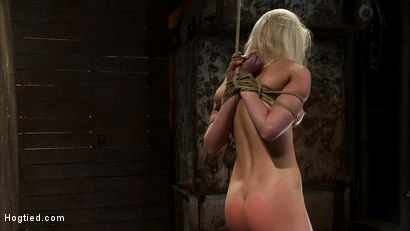 Photo number 13 from Local amateur girl in her first hardcore bondage shoot<br>Reverse Prayer, flogged her perfect ass. shot for Hogtied on Kink.com. Featuring Natasha Lyn in hardcore BDSM & Fetish porn.