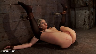 Photo number 15 from Shy sexy blond girl is trapped, bound, humiliated<br>Long legs spread wide, made to cum like a whore shot for Hogtied on Kink.com. Featuring Natasha Lyn in hardcore BDSM & Fetish porn.