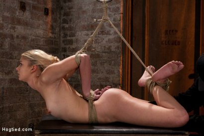 Photo number 7 from Sexy Blond with amazing hard fit body, suffers Category 5 Suspension<br>First hardcore bondage shoot shot for Hogtied on Kink.com. Featuring Natasha Lyn in hardcore BDSM & Fetish porn.