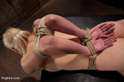 Photo number 1 from Sexy Blond with amazing hard fit body, suffers Category 5 Suspension<br>First hardcore bondage shoot shot for Hogtied on Kink.com. Featuring Natasha Lyn in hardcore BDSM & Fetish porn.