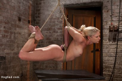 Photo number 14 from Sexy Blond with amazing hard fit body, suffers Category 5 Suspension<br>First hardcore bondage shoot shot for Hogtied on Kink.com. Featuring Natasha Lyn in hardcore BDSM & Fetish porn.